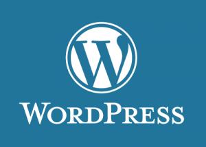 Proteger WordPress
