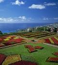 Hoteis Madeira