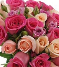 Retire toda a folhagem em excesso do caule e corte-o no comprimento desejado, sem deixá-lo muito comprido. Para preservar a cor das flores