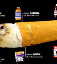 deixar de fumar 4 (2)
